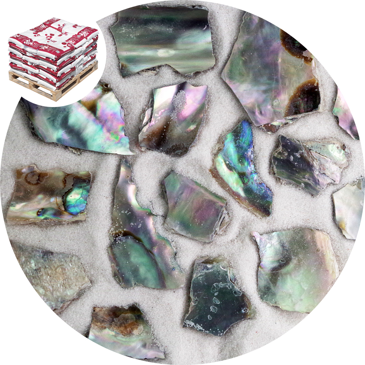 Buy Crushed Sea Shells Natural Abalone Specialist