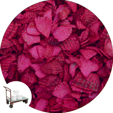 Recycled Coloured Shell - Soft Magenta - Collect