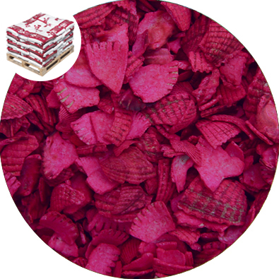 Recycled Coloured Shell - Soft Magenta