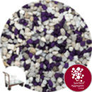 Aquarium Mini Gravel - Natural Starfish Purple - Click & Collect - 7236
