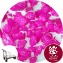Aspen Flare - Day Glo Pink - Collect