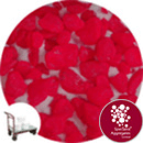 Aspen Flare - Day Glo Red - Click & Collect - 3946