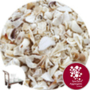 Barra Shell - Harling - Click & Collect - 8961