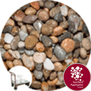 Caledonian Pebbles 14-20mm - Click & Collect