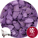 Coloured Sea Shells - Crushed Starburst Violet - Click & Collect - 8965