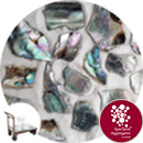 Crushed Sea Shells - Natural Abalone - Click & Collect