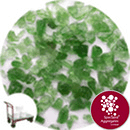 Recycled Enviro-Glass - Green Crush - Collect