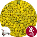 Rounded Gravel - Sunflower - Click & Collect