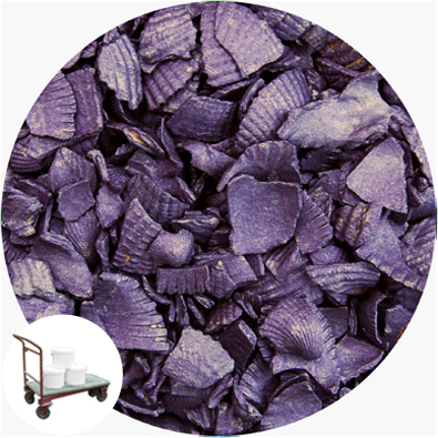 Recycled Shell - Crushed Starburst Violet - Collect